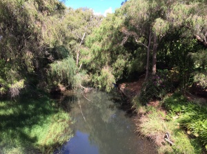 The little creek next to Stirling Cottage